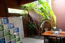Wild Sun Rescue Center, Cabuya, Costa Rica