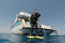 Orca Dive Club El Gouna - Abu Tig Marina, El Gouna, Egypt