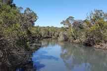 Balcombe Estuary Reserves, Mt Martha, Australia