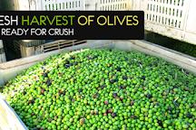 Fresh Harvest Tasting Room - Eureka Springs, Eureka Springs, United States
