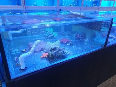 AquaZoo Aquarium