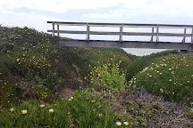 Bean Hollow State Beach, Pescadero, United States