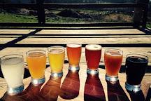 Rising Silo Brewery, Blacksburg, United States