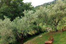 Area Archeologica Forum Sempronii di San Martino del Piano, Fossombrone, Italy