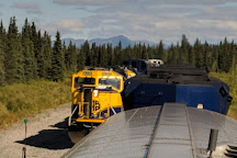 Denali Sightseeing Safaris, Cantwell, United States