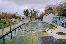 Curraghs Wildlife Park, Ballaugh, United Kingdom