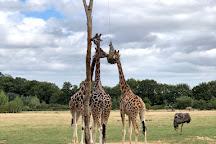 Parc Animalier et Botanique de Branfere, Le Guerno, France
