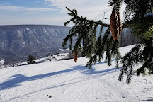 Bristol Mountain Aerial Adventures, Canandaigua, United States