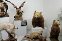 Museo Cantonale di Storia Naturale, Lugano, Switzerland