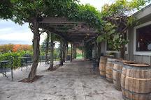 Bowers Harbor Vineyards, Traverse City, United States