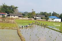Doi Luang National Park, Phan, Thailand