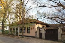 Pushkin Museum, Chisinau, Moldova