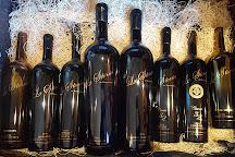 Trentadue Winery, Geyserville, United States