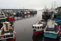 North Shields Fish Quay, North Shields, United Kingdom