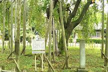 Asuwayama Park, Fukui, Japan