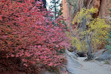 Hidden Canyon, Zion National Park, United States