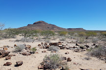 Petrified Forest, Damaraland, Namibia