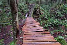 Whyte Lake Trail, Caulfeild, Canada