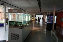 Eureka! Zientzia Museoa, San Sebastian - Donostia, Spain