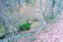 Little Dragon's Forest Educational Trail, Slovenske Konjice, Slovenia