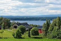 Moose Garden, Orrviken, Sweden