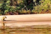 Cuiaba - Pantanal Tours, Cuiaba, Brazil