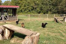 Gentry's Farm, Franklin, United States