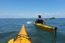 Brizyak Kayak Hire, Brisbane, Australia