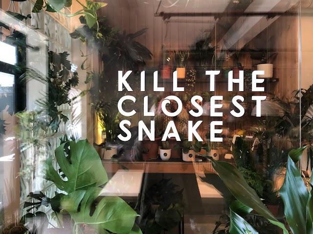 Kill the closest snake