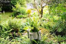 Caher Bridge Garden, Ballyvaughan, Ireland