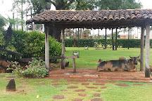 Parque do Peao, Barretos, Brazil