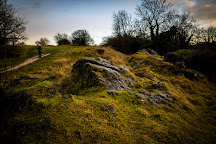 Anston Stones Wood, Sheffield, United Kingdom