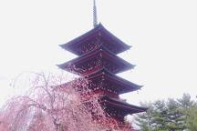 Hirosaki Cherry Blossom Festival, Hirosaki, Japan