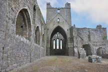 Dunbrody Abbey, Campile, Ireland