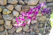 Botanical Gardens of Nevis, Nevis, St. Kitts and Nevis