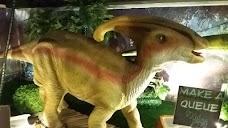 Dino Adventure Land karachi