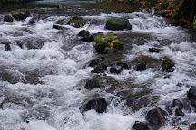 Bridal Veil Falls State Park, Corbett, United States