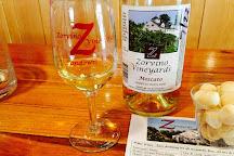 Zorvino Vineyards, Sandown, United States
