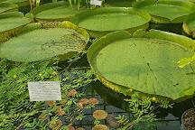 Botanischer Garten, Jena, Germany