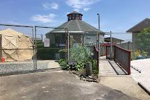 Marine Mammal Stranding Center, Brigantine, United States