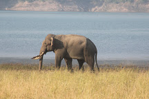 The Pugmark Safari and Tours, Jim Corbett National Park, India