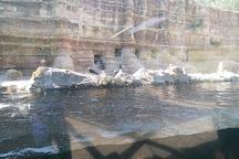 Sedgwick County Zoo, Wichita, United States