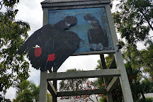 Daintree Wild Zoo, Daintree, Australia