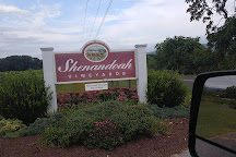 Shenandoah Vineyards, Edinburg, United States