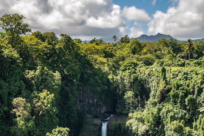 Fuipisia Waterfall, Upolu, Samoa
