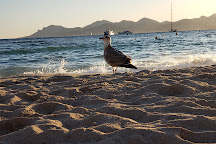 Plage du Martinez, Cannes, France