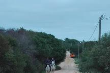Passeios a Cavalo Melides, Melides, Portugal