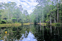 Maroochy Regional Bushland Botanic Garden, Tanawha, Australia