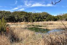 Abilene State Park, Tuscola, United States