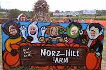 Norz Hill Farm & Market, Hillsborough, United States